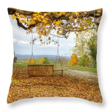 Swing With A View Throw Pillow