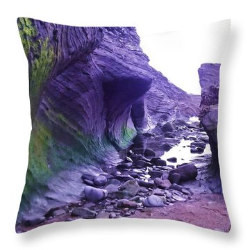 Throw Pillow featuring the photograph Swirl Rocks by John Williams