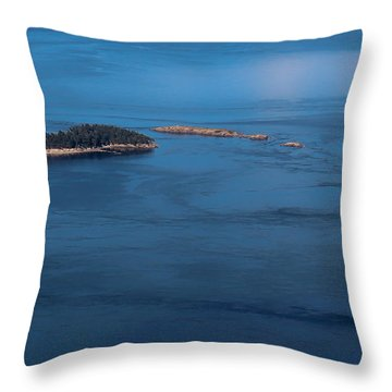 Swirling Currents Throw Pillow by Jacqui Boonstra