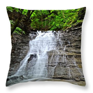 Swirling Falls Throw Pillow by Frozen in Time Fine Art Photography
