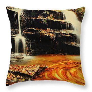Swirling Leaves Throw Pillow by Rodney Lee Williams
