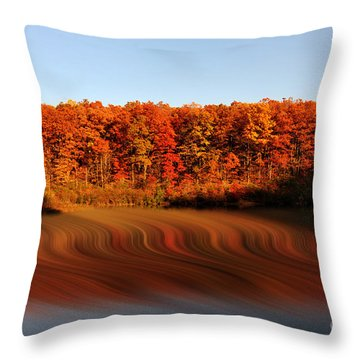Swirling Reflections With Fall Colors Throw Pillow by Dan Friend