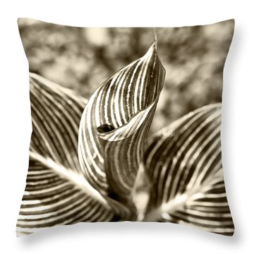 Swirls And Stripes Throw Pillow