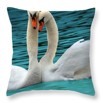Throw Pillow featuring the photograph Swooning Swans by Brian Stevens
