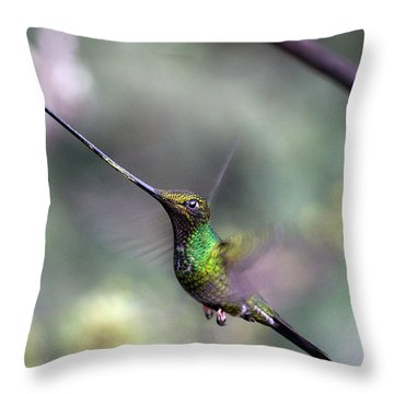 Sword-billed Hummingbird Hovering Ecuador Throw Pillow