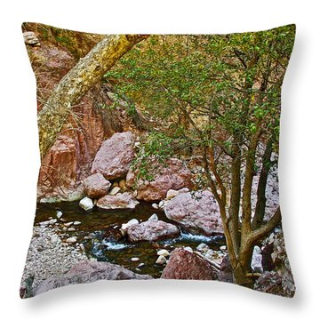 Sycamore And Cottonwood In Whitewater Catwalk National Recreation Trail Near Glenwood-new Mexico  Throw Pillow by Ruth Hager