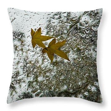 Symbols Of Autumn  Throw Pillow