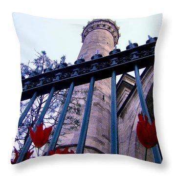 Symbols Of Istanbul Throw Pillow