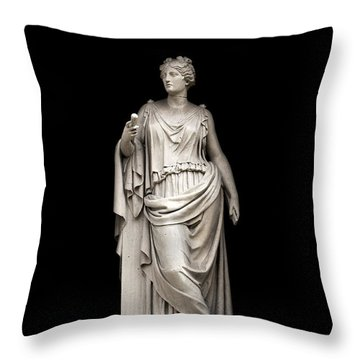 Throw Pillow featuring the photograph Symmetry by Fabrizio Troiani