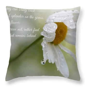 Sympathy Card Throw Pillow by Lisa Knechtel