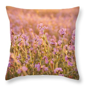 Symphony In Pink Throw Pillow by Anne Gilbert