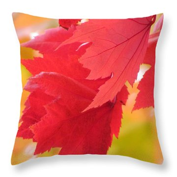 Symphony Of Autumn 22 Throw Pillow by France Laliberte