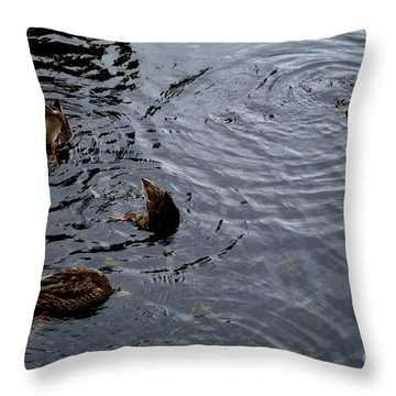 Synchronised Swimming Team Throw Pillow by Scott Lyons