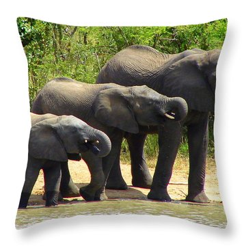 Synchronized Drinking Throw Pillow