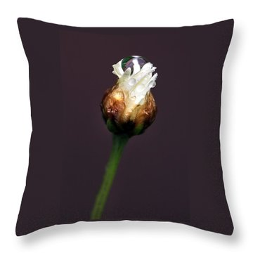 Synergy I Throw Pillow