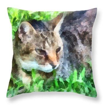 Tabby Cat Closeup Throw Pillow by Susan Savad