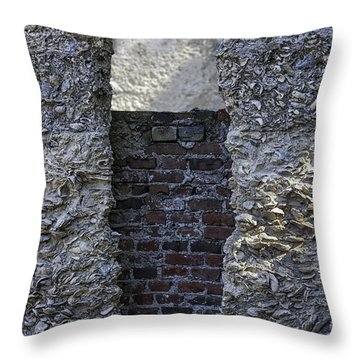 Tabby Wall With Red Brick Infill Throw Pillow by Lynn Palmer