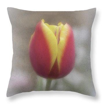 Tabitha Throw Pillow by Elaine Teague