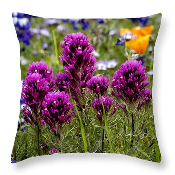 Table Mountain Beauties Throw Pillow