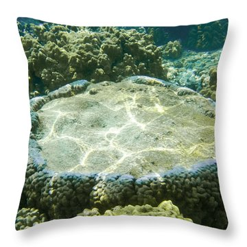 Table Top Coral Throw Pillow
