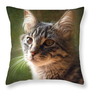 Tabs Throw Pillow