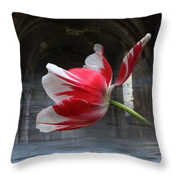 Tabula Rasa Throw Pillow