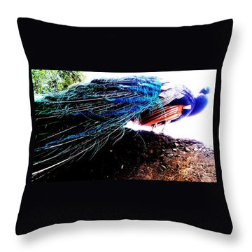Tail Of Peacock Throw Pillow