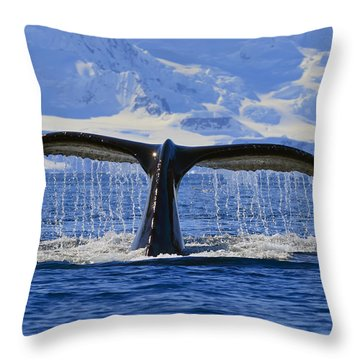 Tails From Antarctica Throw Pillow
