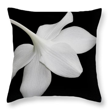 Take A Bow Throw Pillow by Judy Whitton