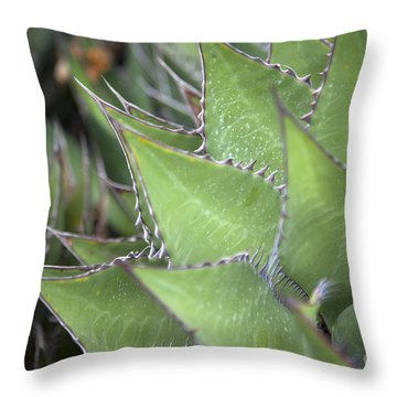 Take A Seat Throw Pillow by Amanda Barcon