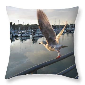 Throw Pillow featuring the drawing Take Flight by Dianne Levy