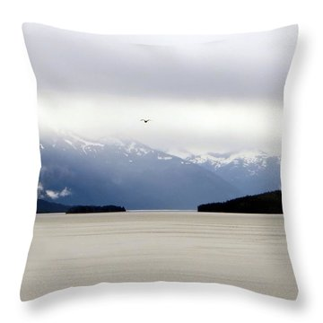 Throw Pillow featuring the photograph Take Flight by Jennifer Wheatley Wolf