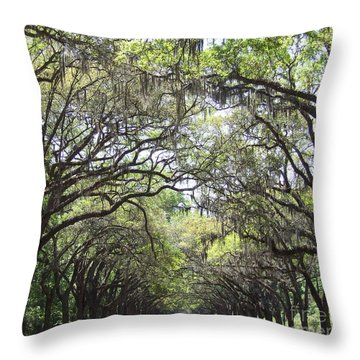 Throw Pillow featuring the photograph Take Me Home by Andrea Anderegg