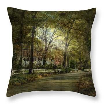 Throw Pillow featuring the photograph Take Me Home by John Rivera