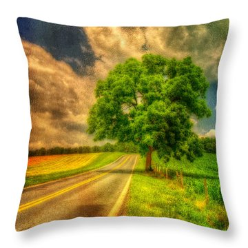 Take Me Home Throw Pillow by Lois Bryan