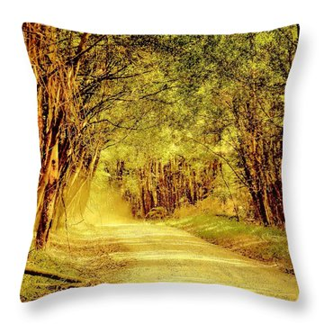 Throw Pillow featuring the photograph Take Me Home by Wallaroo Images