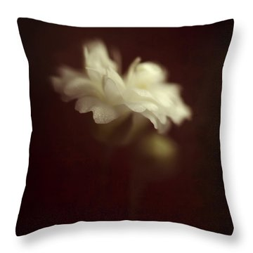 Take Me To The Secret Place Where All Your Dreams Come True Throw Pillow