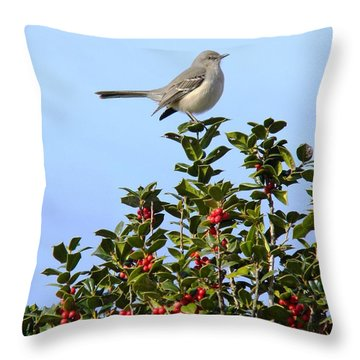 Take My Picture Feb 2014 Throw Pillow