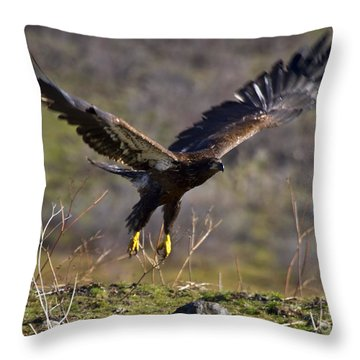 Take-off Throw Pillow by Mike  Dawson