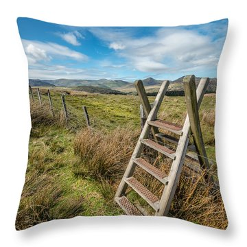 Take The Path Throw Pillow