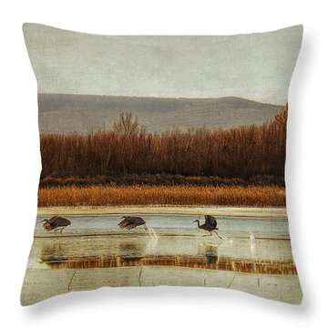 Takeoff Of The Cranes Throw Pillow by Priscilla Burgers