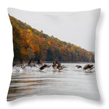Takeoff Throw Pillow by Steve Clough