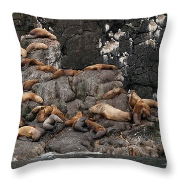 Takin' It Easy Throw Pillow