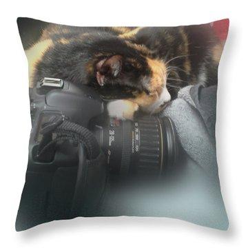 Taking A Break Throw Pillow