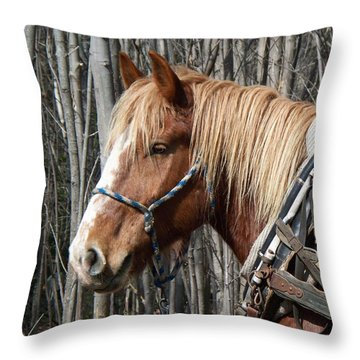Taking A Break Throw Pillow by Joy Nichols