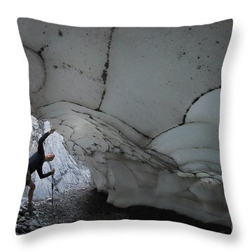 Taking A Look Throw Pillow by Bob Christopher