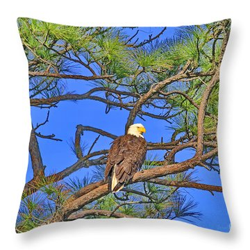 Taking A Nest Break Throw Pillow by Deborah Benoit