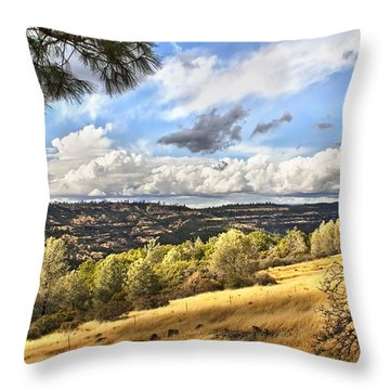 Taking A Ride Up Highway 32 Throw Pillow
