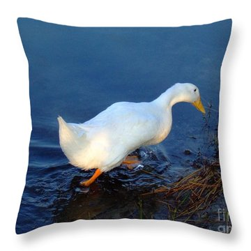 Throw Pillow featuring the photograph Taking A Walk by Bob Sample