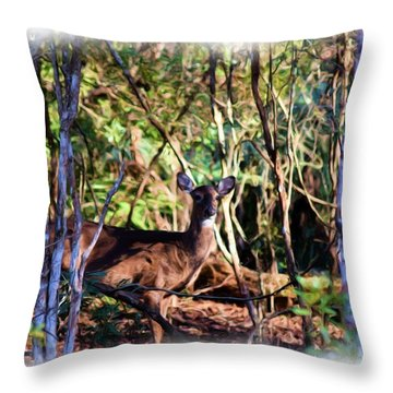 Taking Cover 1 Throw Pillow